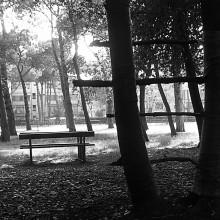 2005 | Parco Marina di Carrara | bozzetto.