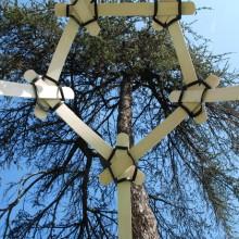 Fragile Encounter | legno di samba, gomma. 600x320x310 cm